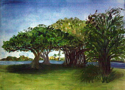 Painting - Banyon At Lake Ida East Park by Donna Walsh