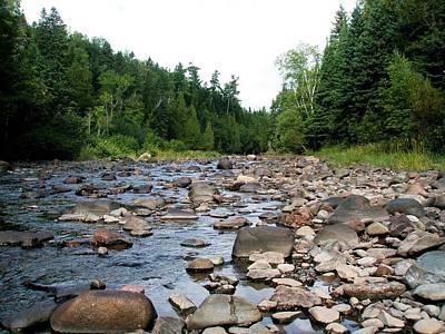 Photograph - Baptism Creek by Bridget Johnson