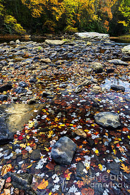 Baptizing Photograph - Baptizing Hole In Fall by Thomas R Fletcher