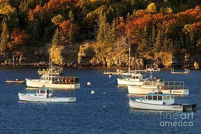 Photograph - Bar Harbor Boats by Brian Jannsen
