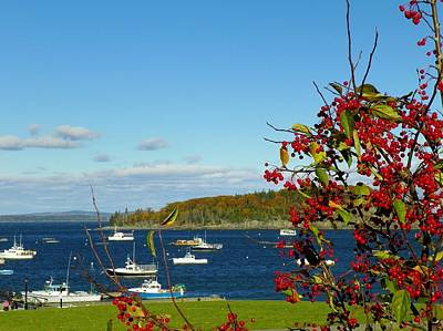 Photograph - Bar Harbor by Gene Cyr