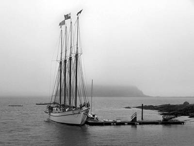 Photograph - Bar Harbor Ship by Gene Cyr