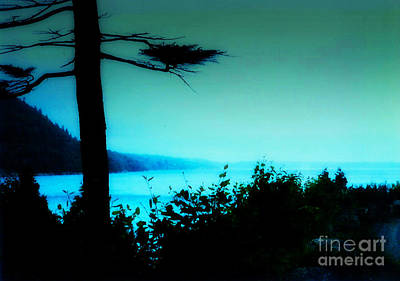 Photograph - Bar Harbor View by Desiree Paquette