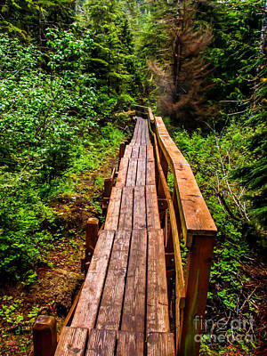Photograph - Baranof Boardwalk by Robert Bales