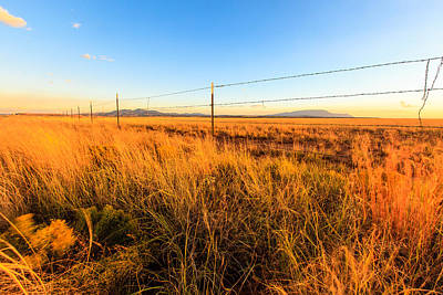 Photograph - Barbed Wire Fence by Ben Graham