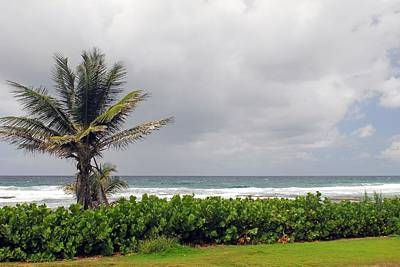 Photograph - Barbados And The Ocean by Willie Harper