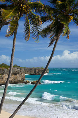 Barbados Art Print by Brian Jannsen