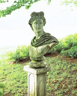 Ancient Culture Photograph - Barbara Cirkva Bust Of Apollo by Dana Gallagher