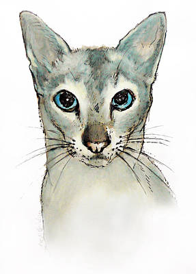 Drawing - Barbara'cat by Roz McQuillan