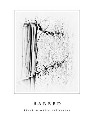 Photograph - Barbed  Black And White Collection by Greg Jackson