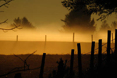 Art Print featuring the photograph Barbed Silhouette by Paul Noble