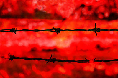Keep Out Digital Art - Barbed Wire 3 by Steve Ball