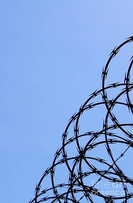 Photograph - Barbed Wire And Blue Sky by Sarah Loft