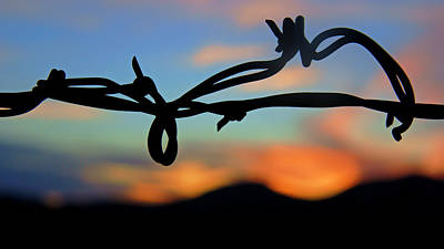 Photograph - Barbed Wire At Sunset by Daniel Woodrum
