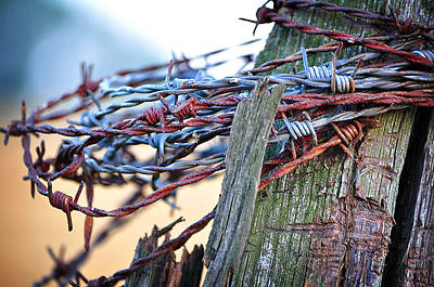 Photograph - Barbed Wire by Jenn Bowers