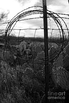 Photograph - Barbed Wire Cirlce Bw by Kerri Mortenson