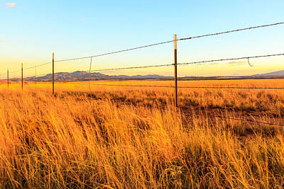Photograph - Barbed Wire Fence 2 by Ben Graham