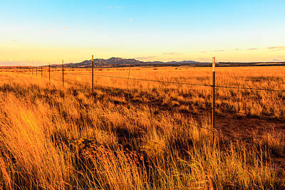 Photograph - Barbed Wire Fence 3 by Ben Graham