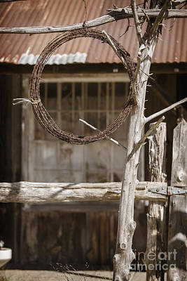 Photograph - Barbed Wire Hanging By Ranch House 3006.03 by M K Miller