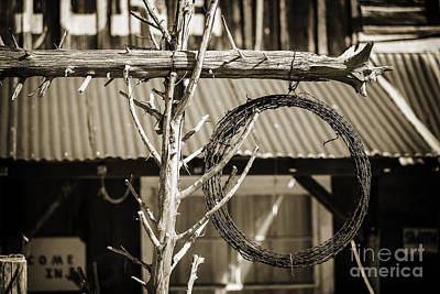 Photograph - Barbed Wire In Front Of An Old House 3001.01 by M K Miller
