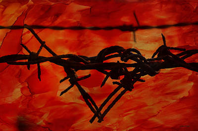 Barbed Wire Photograph - Barbed Wire Love Series  Rage by Lesa Fine