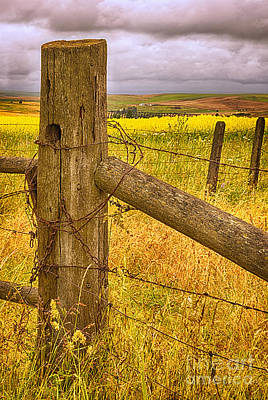 Wheat Chain Photograph - Barbed Wire On Fence Post by Priscilla Burgers