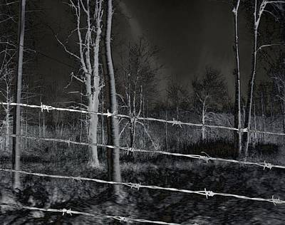 Wire Tree Photograph - Barbed Wires by Gothicrow Images
