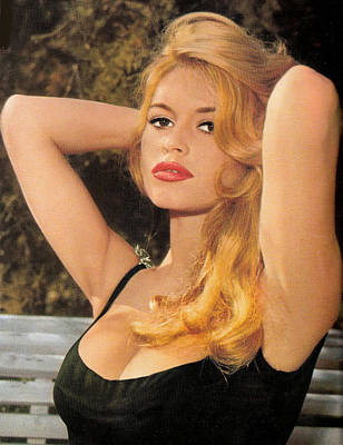 Bardot Photograph - Bardot by Sue Rosen