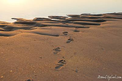 Print featuring the photograph Barefoot In Sand by Robert Banach