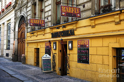 Photograph - Barfly In Prague by John Rizzuto