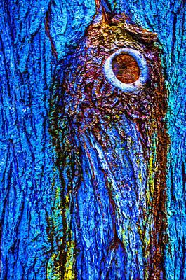 Forestry Mixed Media - Bark Blues 2 by Brian Stevens