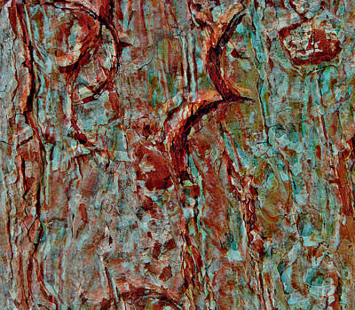 Digital Art - Bark Layered by Stephanie Grant