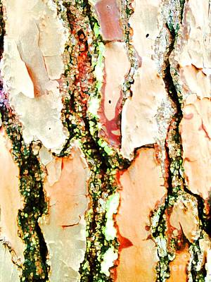 Photograph - Bark With An Accent by Barbie Corbett-Newmin