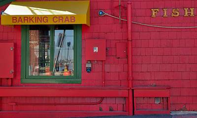 Photograph - Barking Crab by Steven Richman