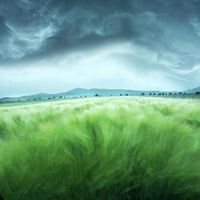 Thunderstorm Photograph - Barley Field by Floriana Barbu