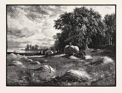 Barley Harvest, Canada Art Print