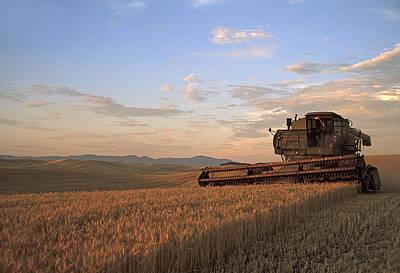Photograph - Barley Harvest by Doug Davidson