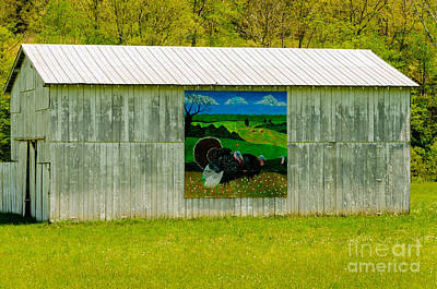 Photograph - Barn - Wild Turkey Mural by Mary Carol Story