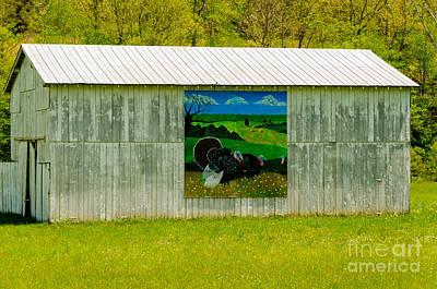 Photograph - Barn - Wild Turkey Mural by Mary Carol Story
