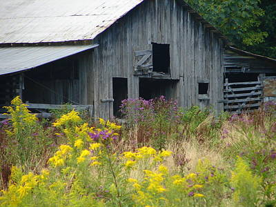Photograph - Barn 3 by Lew Davis