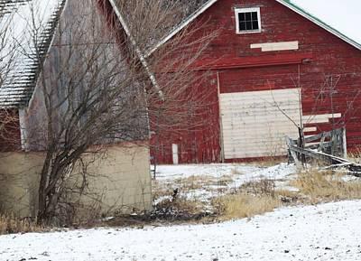 Photograph - Barn 36 by Todd Sherlock