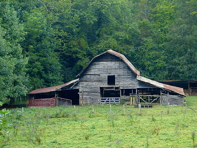 Photograph - Barn 4 by Lew Davis