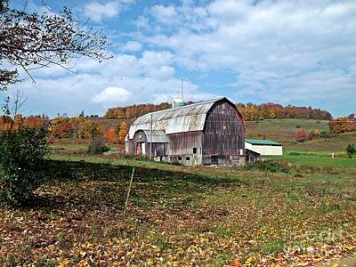 Photograph - Barn And Blue Sky by Christian Mattison
