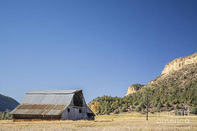 Photograph - Barn And Mesa by Tim Mulina