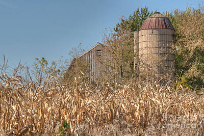 Photograph - Barn And Silo Amid Cornstalks by Deborah Smolinske
