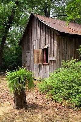 Photograph - Barn And Stump by Gordon Elwell