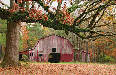 Photograph - Barn And Tree by Robert Camp