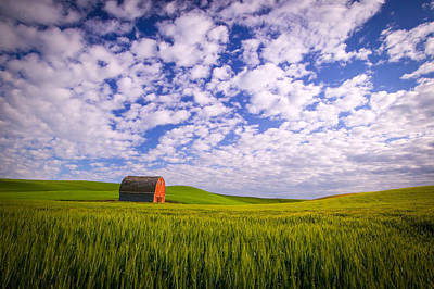 Photograph - Barn And Wheat II by Randy Green