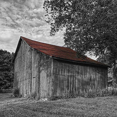 Barn At Avenel Plantation - Red Roof Art Print by Steve Hurt