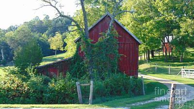 Barn At Piney River Art Print